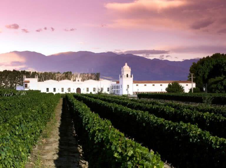 #BT Patios de Cafayate Wine Hotel