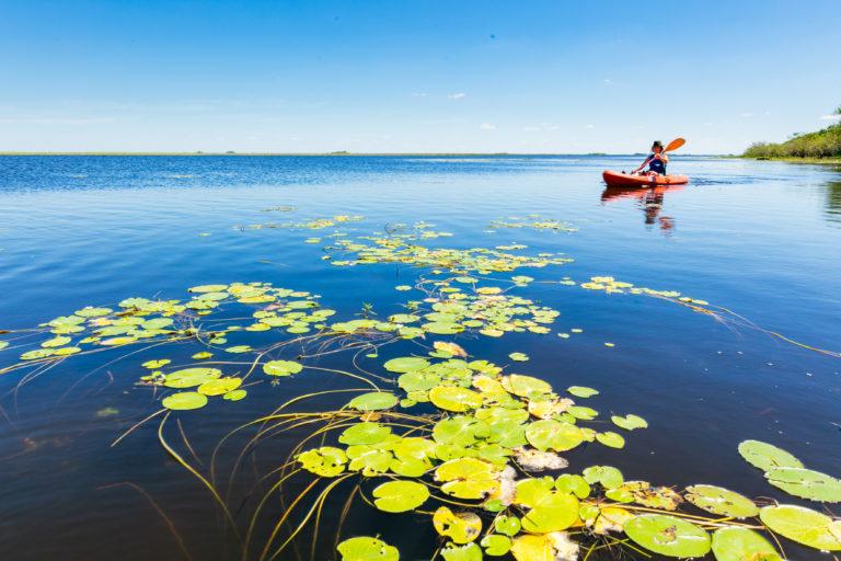 #BTAdventure Kayak negli Esteros del Iberá