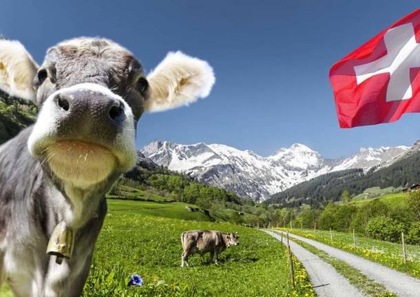 #BT Svizzera