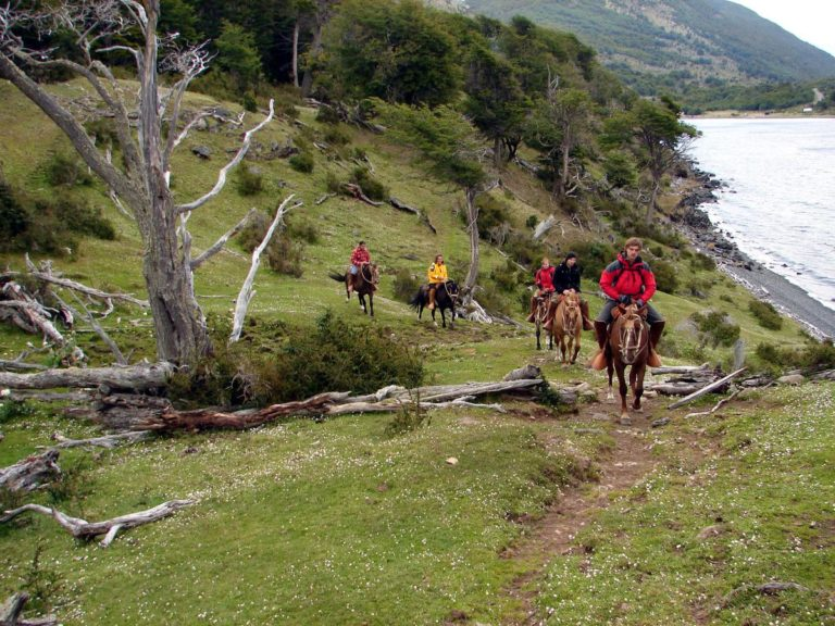 #BT Uscita a Cavallo, Isola Navarino, Patagonia, Cile